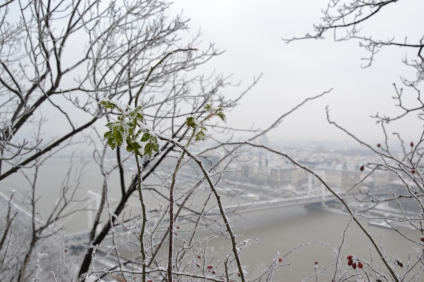 Defying the cold, Budapest, Hungary